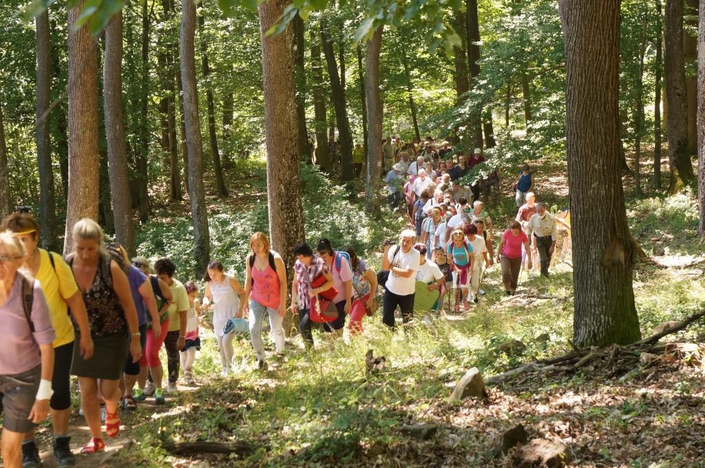 """A 14 éve a Mátrában szerveződő """"Muzsikál az erdő"""" rendezvények immár öt éve  juttatják el a fenntarthatóság értékrendjét a zene 2943c05f26"""